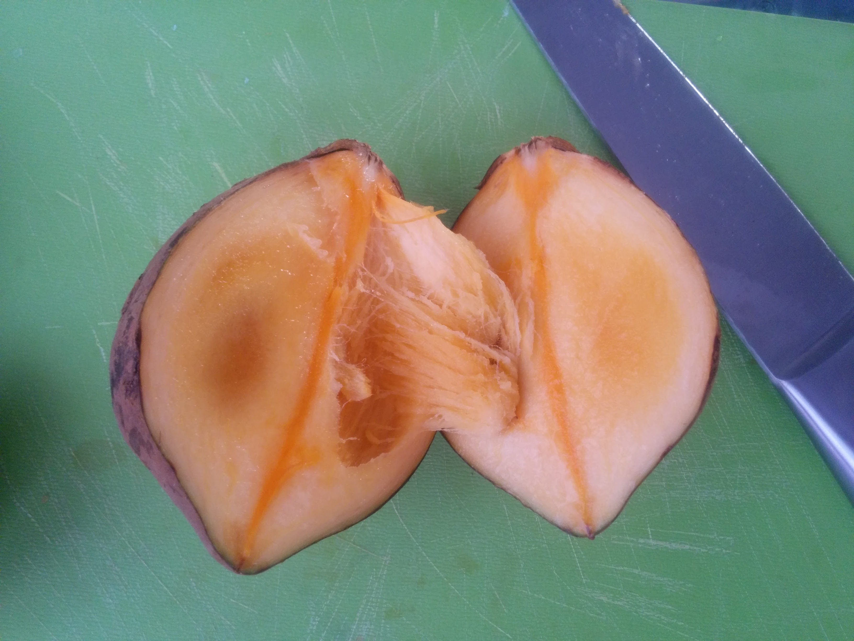 colombian zapote fruit