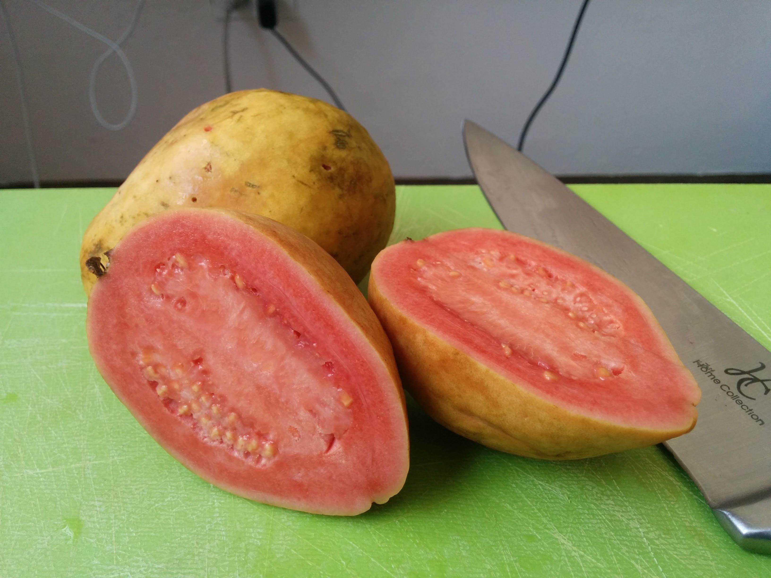 colombian guayaba fruit